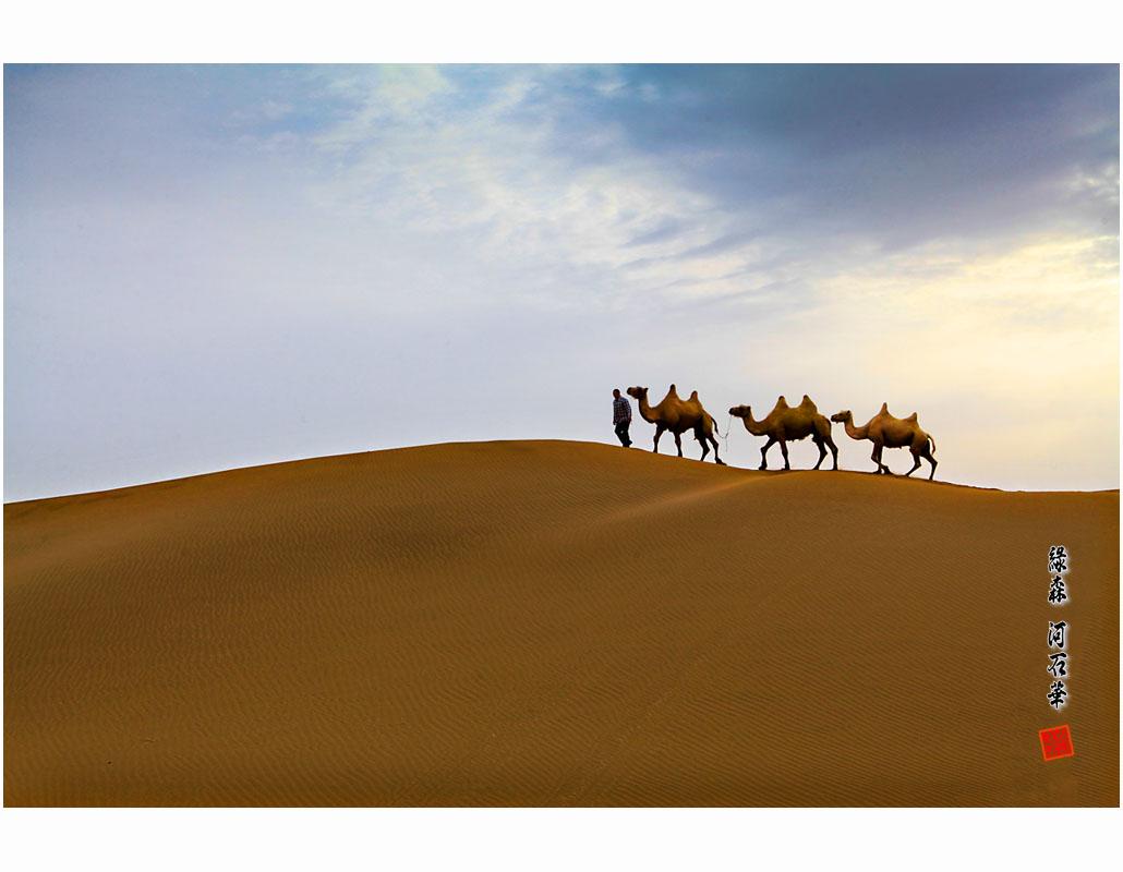 일쿠무타크사막